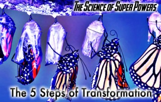 the-five-steps-of-transformation-a-personal-power-persepective